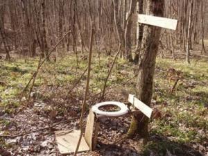 toaleta-rustica